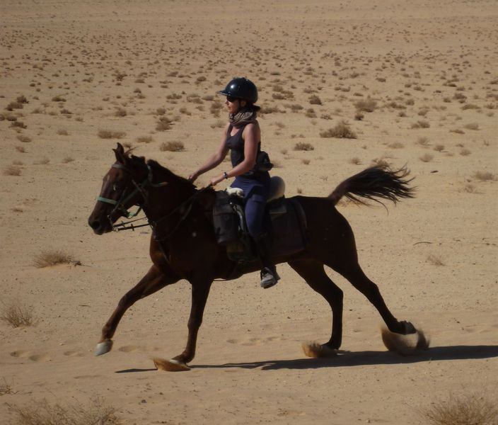 2 Days Horse Riding in Little Petra