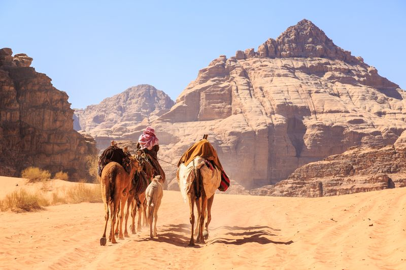 Day tour to Wadi Rum from the port or border of Aqaba